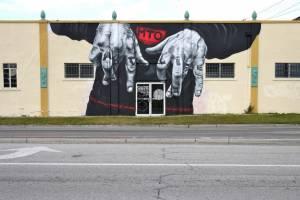 """Fast Life"", MTO, Sarasota Chalk Festival, 2011"