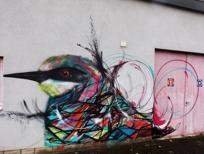 l7m-oiseaux-luxembourg-2