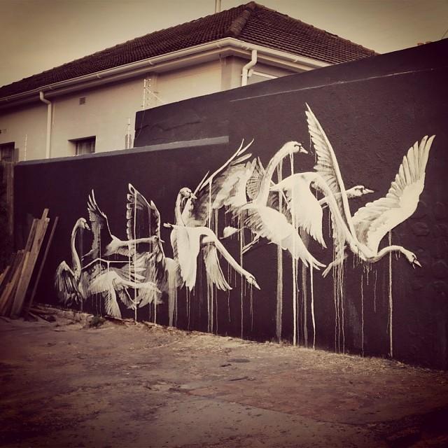 Faith47 - Cape Town 2014