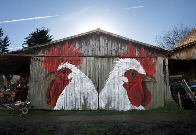 mika-michael-husser-street-art-coqs-alsace_1