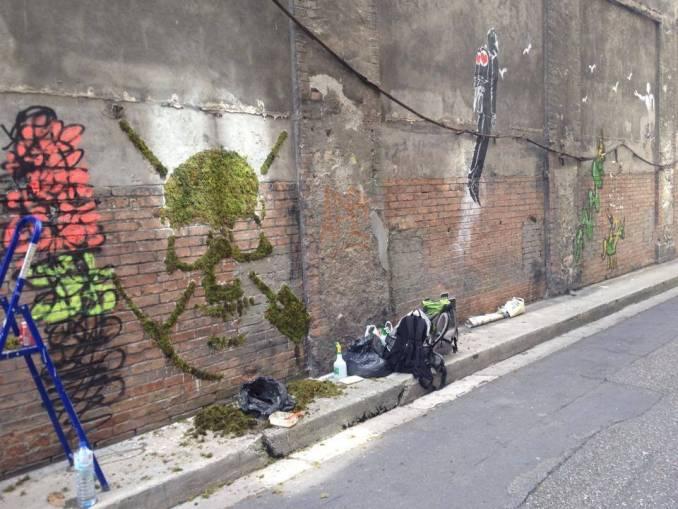 street art végétal - artiste green - grenoble