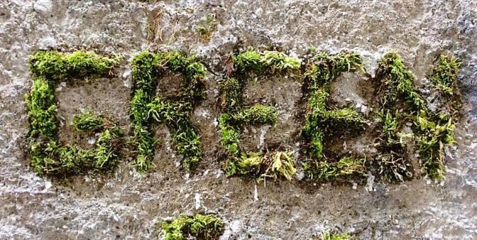 green-street-art-genoble_4