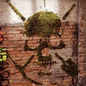 green - street art - grenoble - crane vegetal