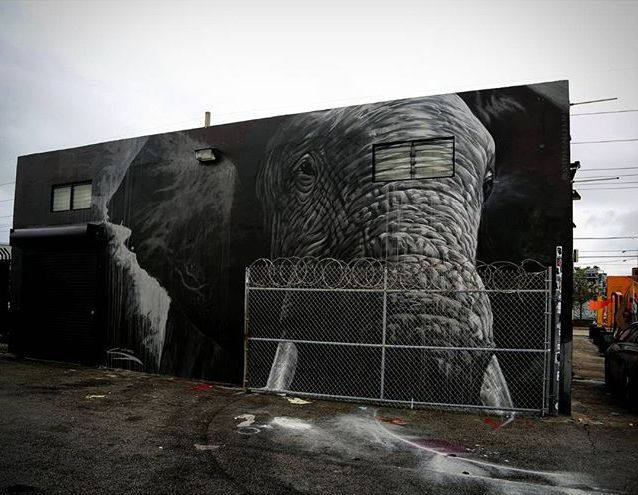 Stefano Alcantara - street art - wynwood - miami - elephant