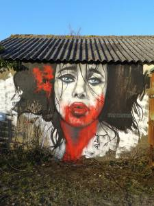 jef-street-art-redon-mars-2016_2