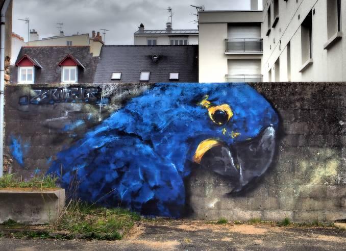 zermi fugs - perroquet - street art avenue - vannes