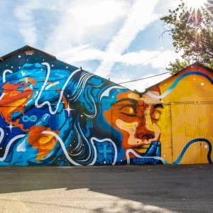 dourone-streetart-darwin-ocean-climax-bordeaux
