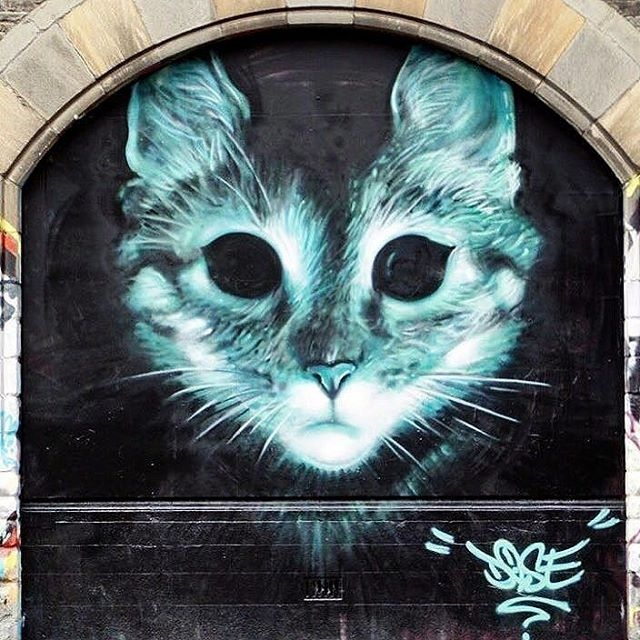 dose - street art - cat - stokes croft - bristol