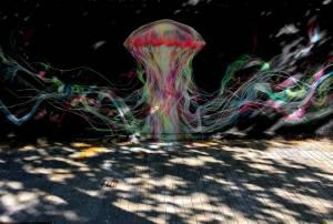 l7m - street art - medusa- barcelone