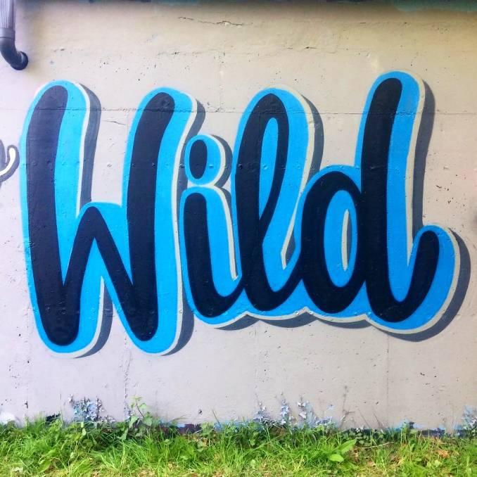 snobe - street art - collectif A4 - vannes
