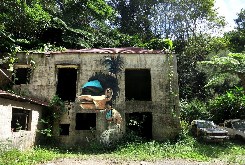 """""""Le danseur de Waa Wi Luû"""" - Houaïlou (Nouvelle Calédonie) - mai 2015"""