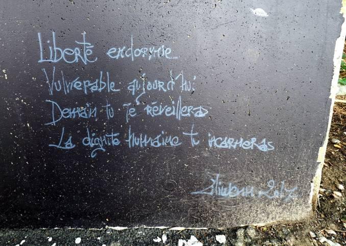 liliwenn - street art - vannes et sa street - liberté endormie
