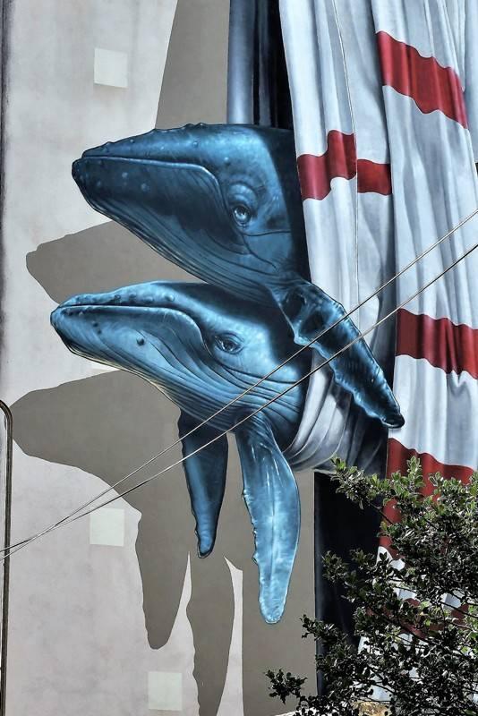 nevercrew - street art - grenoble