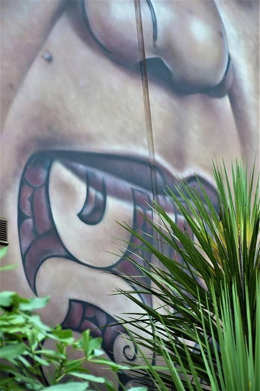 owen dippie - sreet art - auckland