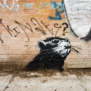 banksy - street art - graffiti - toronto - rat