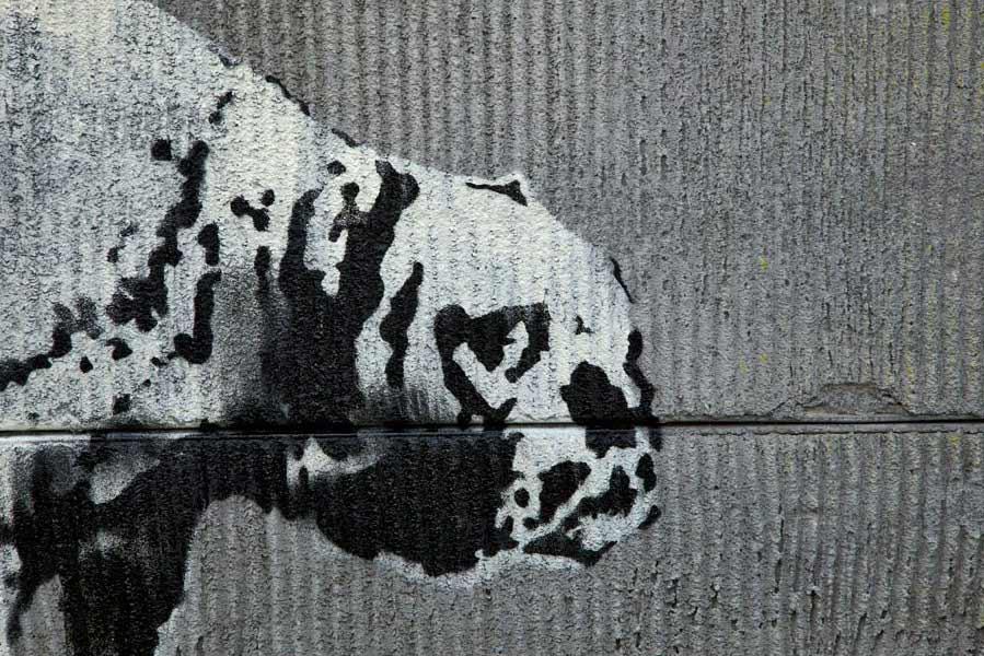 banksy - street art - graffiti - los angeles - dog
