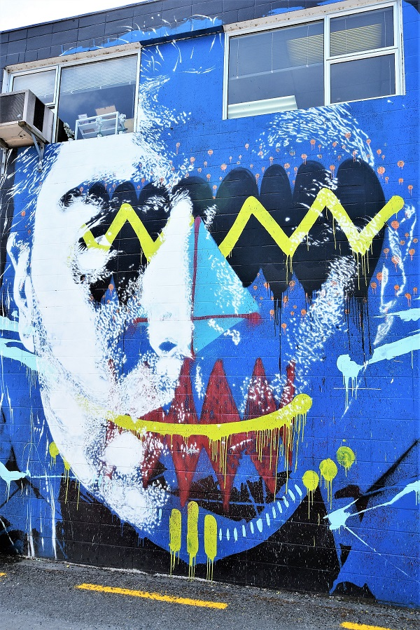 askew one - street art - taupo - nouvelle zélande
