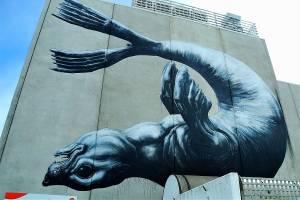 roa - street art - nelson - nouvelle zélande