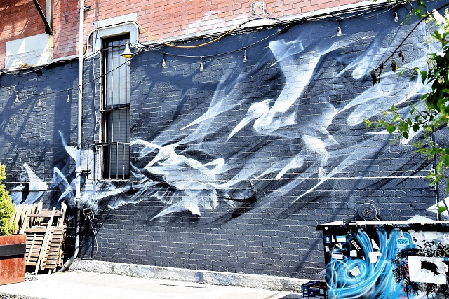 li-hill - street art - broooklyn - new york