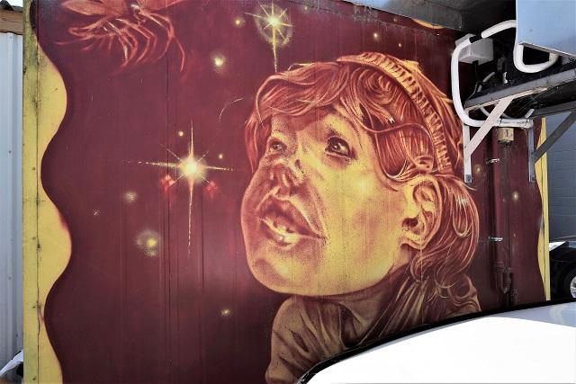 elliot francis stewart - street art - taupo