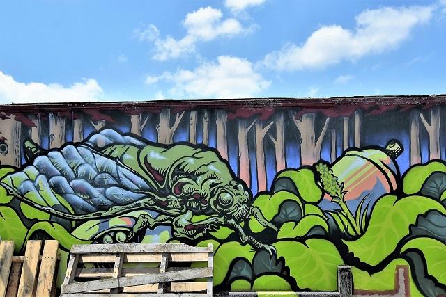 kasik - street art - taupo