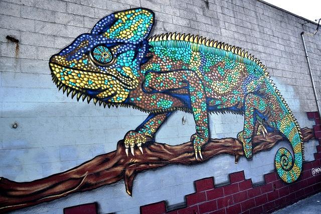 mr prvrt - street art - brooklyn - new york
