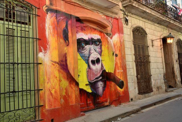 noe two - street art -la havane