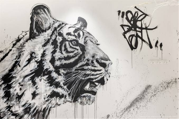 franck lesieur - street art avenue - dedale - vannes
